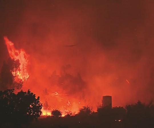 KUUM: Portugali keskosas lõõmavad metsatulekahjud, puhkenud paanika, kaasatud üle tuhande tuletõrjuja