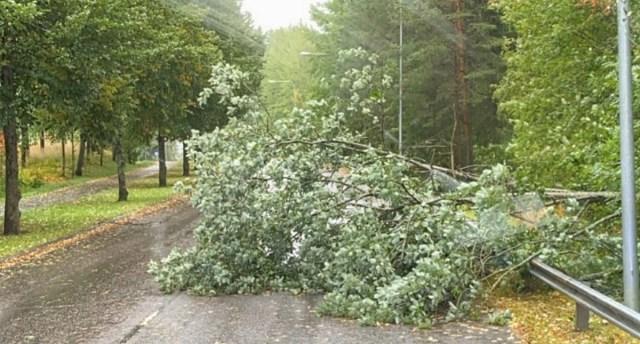 Tormituul räsib nüüd Helsingi ümbrust, elektrita üle 83 000 majapidamise