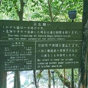 祖谷のかずら橋注意書き・料金表