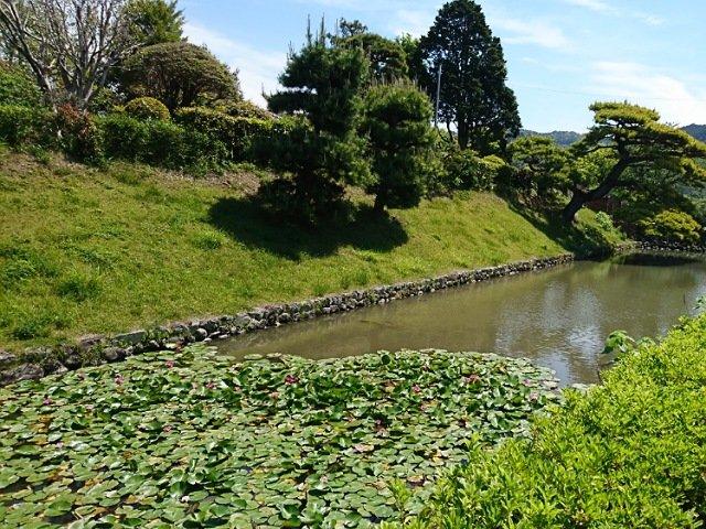 安芸城のお堀