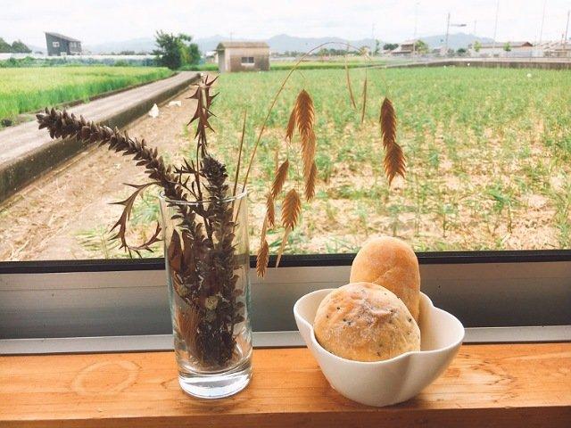 畑の食堂コパン:ランチビュッフェのパン