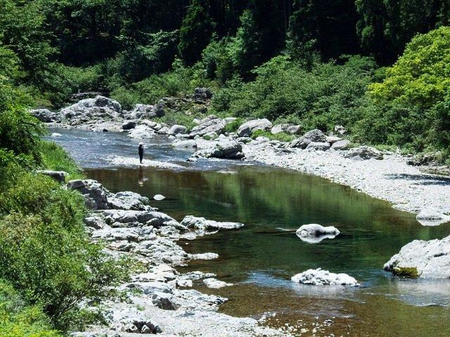 釣りをしている風景