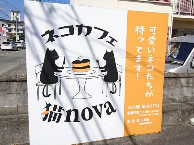 ネコカフェ猫nova:看板