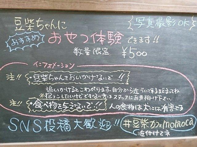 豆柴ドッグカフェmomoca:おやつ体験の詳細