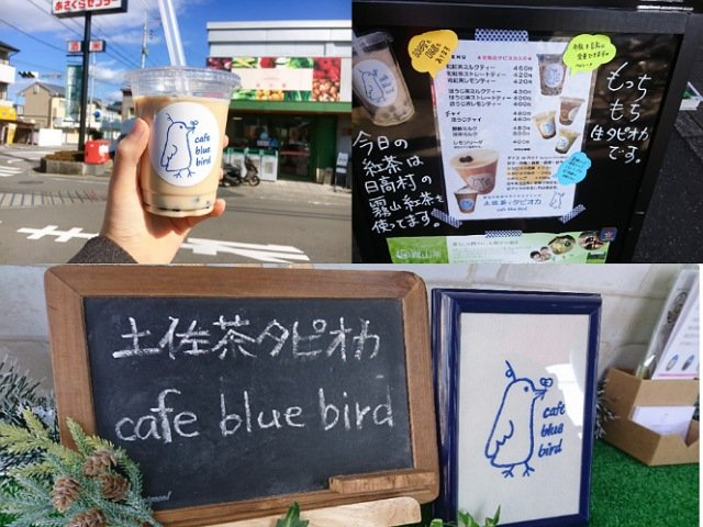 高知で移動販売のタピオカドリンク屋さん「cafe blue bird」へ行ってきた!