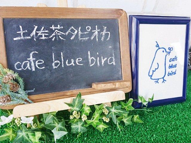 高知で移動販売のタピオカドリンク屋さん「cafe blue bird」
