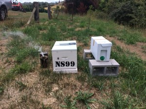 Nuc in planned position of hive with new hive ready on the left