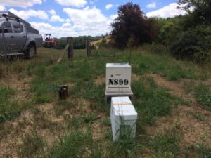 Move nuc 1 metre in front of planned position and replace with new hive.