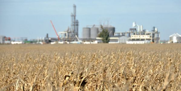 Corn ethanol production raises 22% in two years