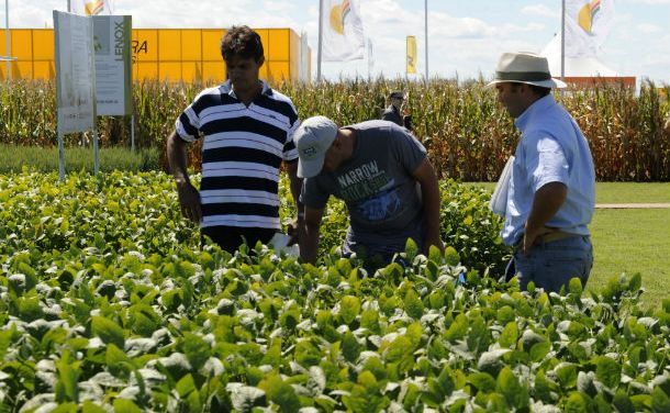 Taxes: One more time, soybean farmers will pay the fight against the fiscal deficit