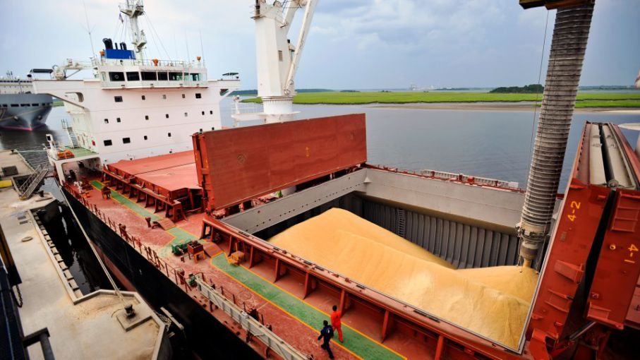 Grain exporters doubled its registrations in response to a possible change in the export taxes scheme