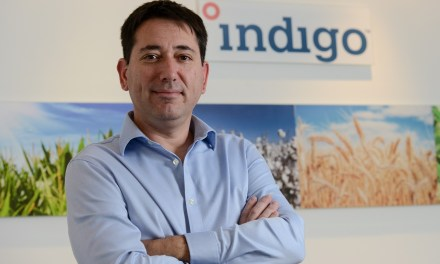 Indigo Brazil debuts with 400K hectares of soybean treated with its products