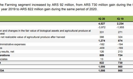 Cresud doubles its earnings from farming actitivy in the 1Q FY 2020