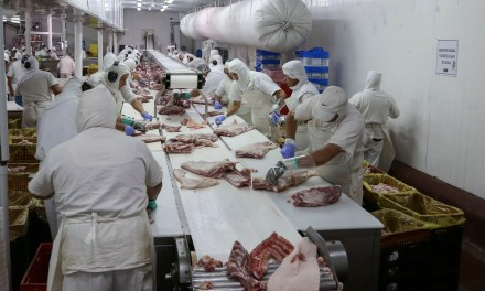 Argentina and China partner to produce pork
