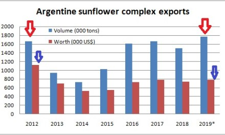 Sunflower exports beat records in volume but not in value