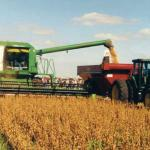 """Soybean wins the award """"commodity of the year"""""""
