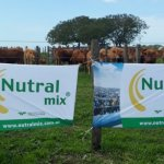 Nutralmix bought a food plant and settles in Trenque Lauquen