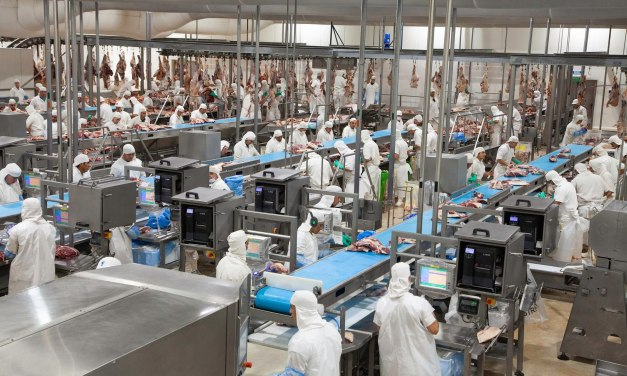 Gorina Meat Processing Plant will invest US$ 5 million to convert effluents into energy