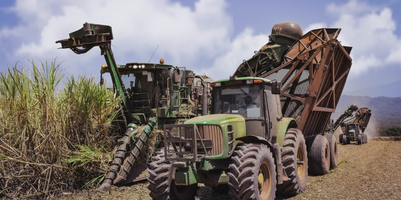 Ledesma concluded 2020 sugar harvest