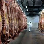 Mexico reopens its market for Argentine meat