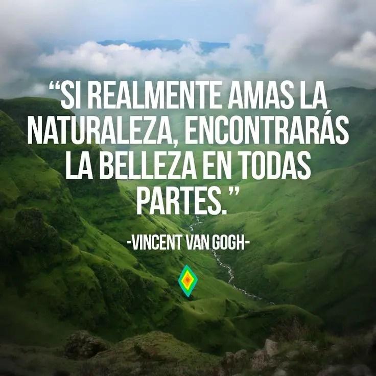 Si realmente amas la naturaleza, encontrarás la belleza en todas partes.
