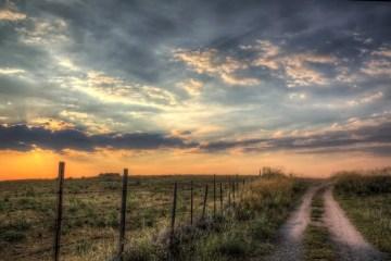 Camino de la vida