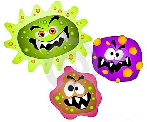 raras0k0258 elementos cotidianos con bacterias 0 - Óleo de coco: Veja os Mitos e as Verdades Sobre Ele
