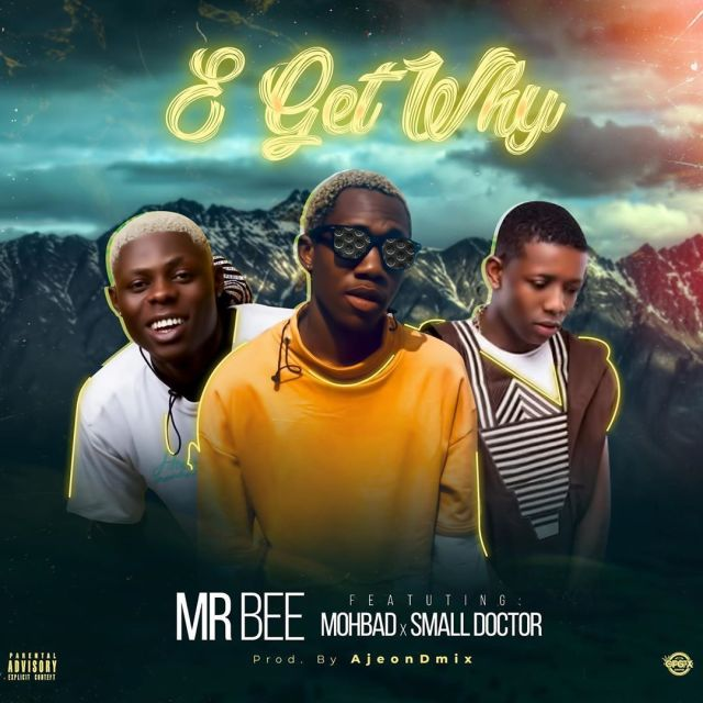 Mr Bee Ft. Mohbad & Small Doctor - E Get Why Mp3 Audio Download