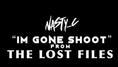 Nasty C Im Gone Shoot Mp3 Audio Download