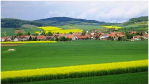 image_summer_newsletter_agriculture.png