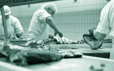 Appalling working conditions in the German meat industry have short to live