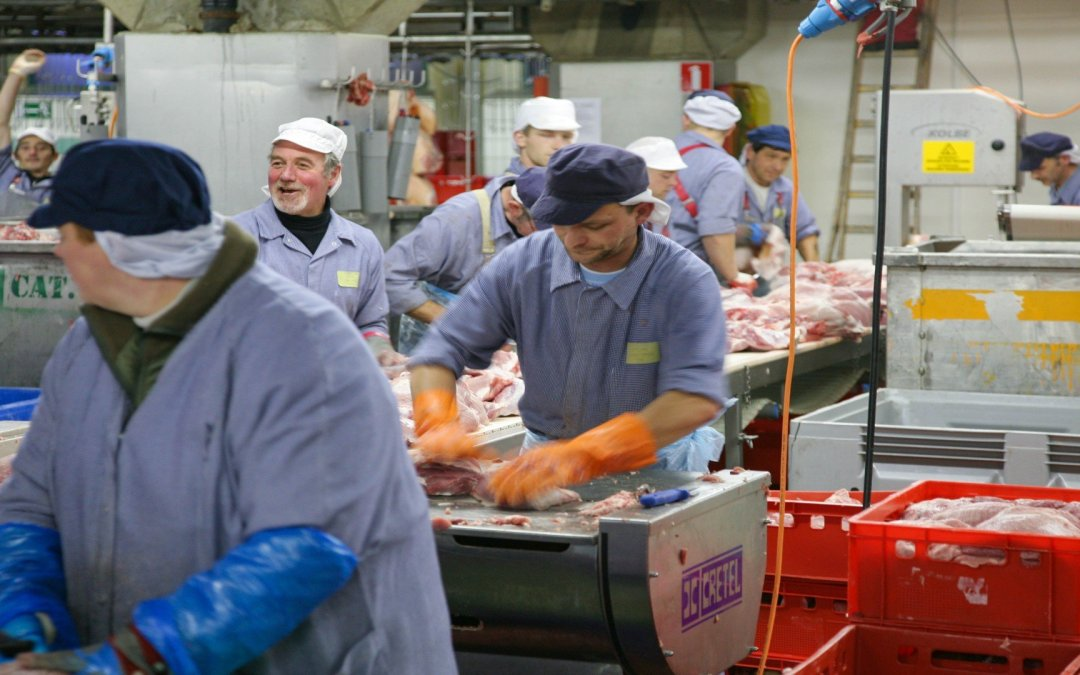 Poverty wages in the German meat sector are a European problem. And it needs fixing, now!