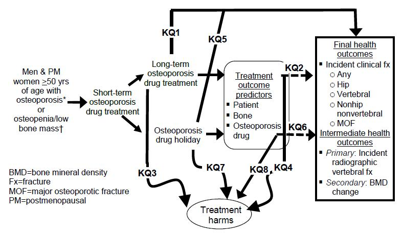Long-Term Drug Therapy and Drug Holidays for Osteoporotic