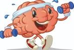 Le cerveau des aînés actifs fonctionne mieux que celui des aînés inactifs