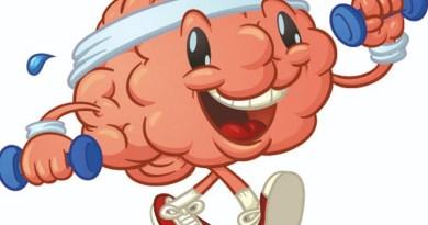 cerveau, aîné, sport, exercice, cardio, santé pour les aîné, le cerveau des aînés