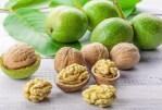 Découvrez l'avantage étonnant des noix de Grenoble
