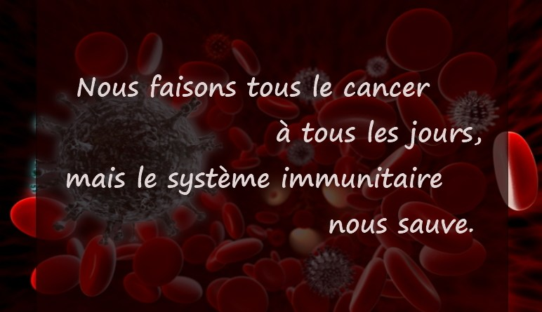 Saviez-vous que, le cancer, les lymphocytes T et B, les lymphocytes, lymphome