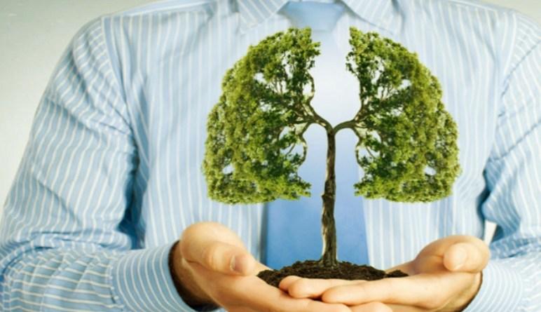 la fonction des poumons, les poumons