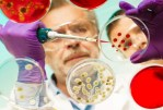 Les virus pourraient être utilisés pour détruire les bactéries