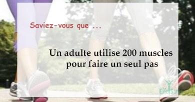 Un adulte utilise 200 muscles pour faire un seul pas