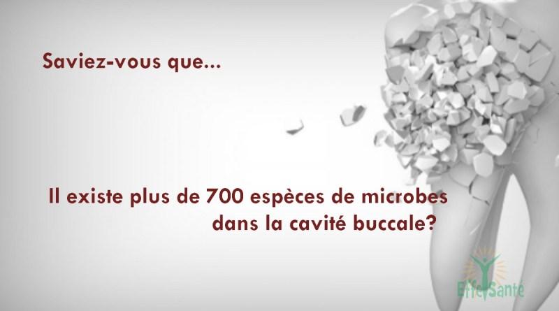 Il existe plus de 700 espèces de microbes dans la cavité buccale?
