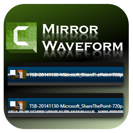 Camtasia Mirror Waveform