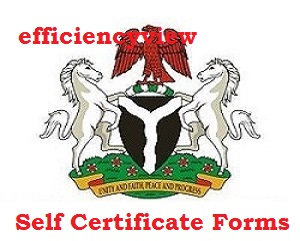 How to fill Bank Self Certificate Forms in Nigerian Banks 2020/2021 - firs.gov.ng