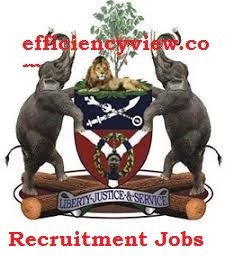 Osun State Government Recruitment for Statistician 2020 apply here