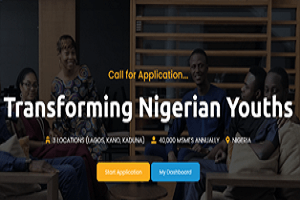 Transforming Nigerian Youth 2020 Application Form out under MSMEs Program apply here