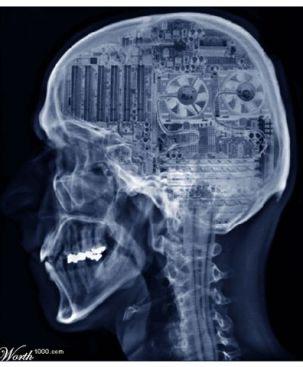 brain_as_computer_252