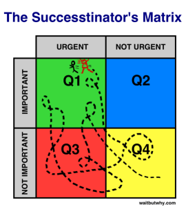 Successtinators-Matrix1-539x600