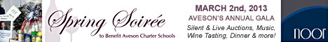 Aveson Charter School's Spring Soiree