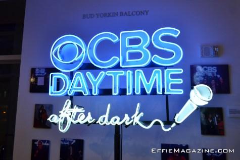 cbs-daytime-30-years-1-011