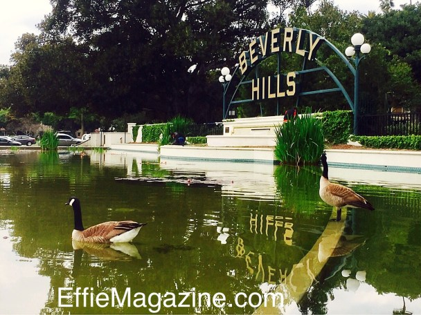 The Lily Pond & Beverly Hills Sign